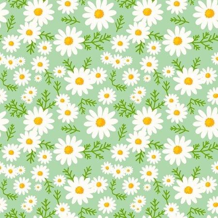 Daisy seamless pattern on fresh mint background. Floral ditsy print with small white flowers and leaves. Chamomile herbal design great for fashion fabric, kitchen textile and wallpaper.