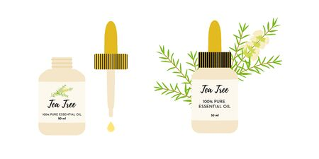 Tea tree essential oil in glass bottles. Eye dropper dropping oil. Malaleuca twigs with flowers and leaves on the background. Vector illustration isolated