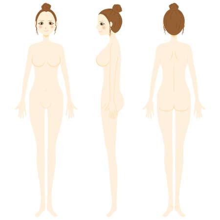 Women's whole body. Nude body. Vektorové ilustrace