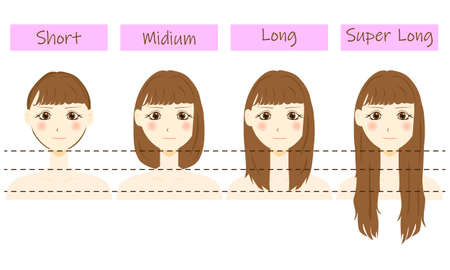 Set of different hair length - short, medium and long, super long.