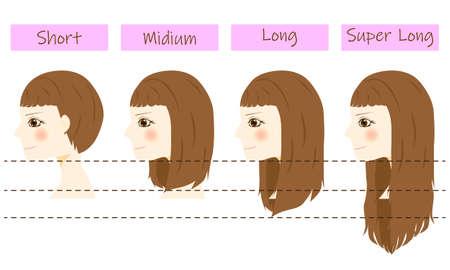 Set of different hair length - short, medium and long, super long. Vecteurs