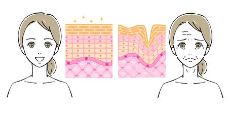 Illustration of Women's Faces, Beauty Concerns