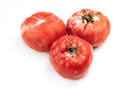 safekeeping: Group of frozen tomatoes with frost isolated on white background