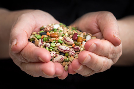 leguminosas: Manos que sostienen las legumbres secas y cereales mixtos