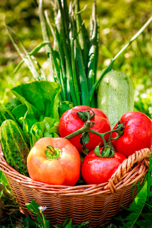 weaved: Fresh vegetables in weaved basket on grass with green background