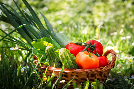 weaved: Fresh vegetables in weaved basket in grass with daisies and green background. Copy space