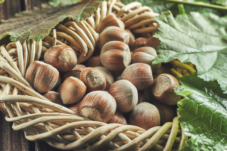 Hazelnuts on wooden background surrounded by leaves Stock Photo