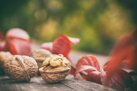 nutshells: Walnuts on wooden table. Green blurry background with plenty of copy space Stock Photo
