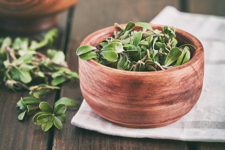 Bearberry leaves (medicinal plant Arctostaphylos uva-ursi) in wooden bowl