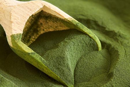 Closeup of chlorella algae powder with wooden scoop