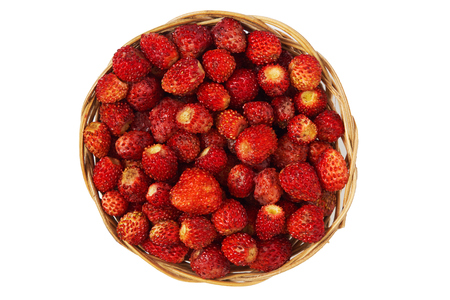 Wild strawberry (Fragaria vesca) in woven basket isolated on white background. Top view