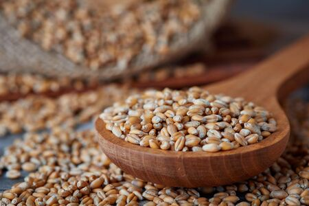 Raw wheat grain in wooden spoon on rustic background