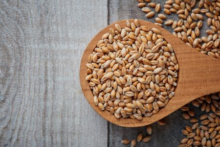 Raw wheat grain in wooden spoon on rustic background. Top view with copy space 免版税图像