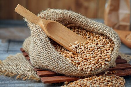 Raw wheat grain in burlap sack on rustic background