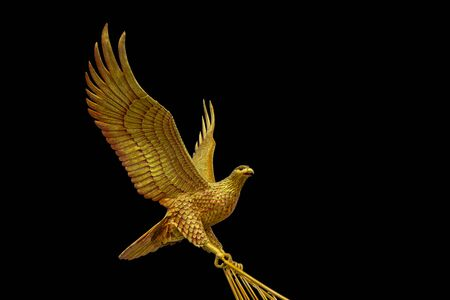 hooked: Eagle is classified as a bird of prey with a wing and a tail that resembles the wing cape or wings broken. Hooked beak is hooked.