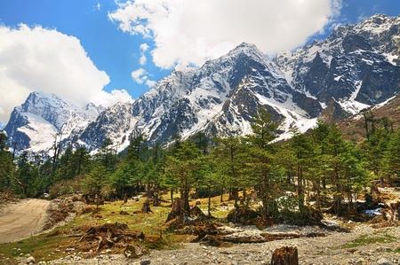 シッキム, インドの Lachung の谷からヒマラヤ山脈ヴィスタの美しい高動的画像