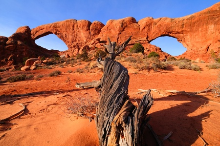 arches national park: North and South windows at Arches National Park, Utah.