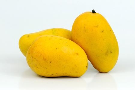 Three Indian mangoes on white background