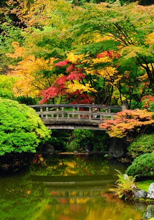 Beautiful garden with bridge and autumn reflection over water