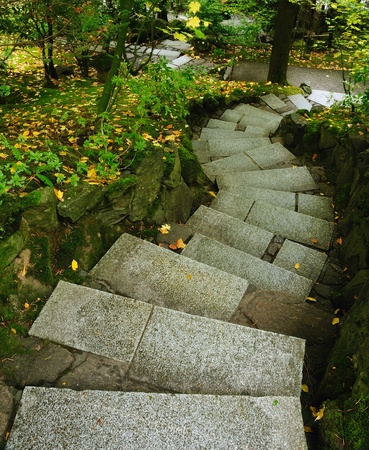 stone steps: beautiful Stariway leading inside a garden in autumn Stock Photo