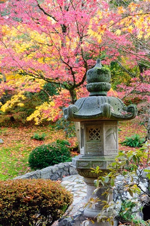 Pretty Japanese architecture design in garden with fall colors photo