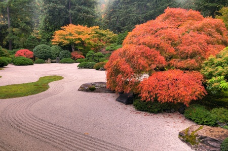 Beautiful autumn colors in a stone chinese garden Standard-Bild