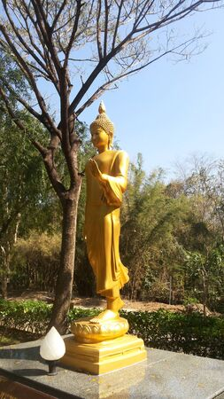 compassionate: Golden Buddha