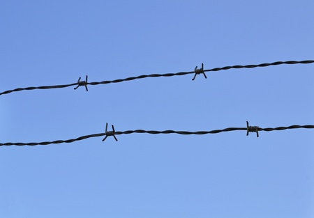wire and sky Stock Photo - 10257068