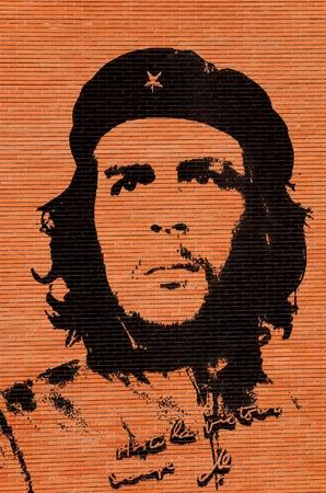 che guevara: Che Guevara in the brick wall Editorial