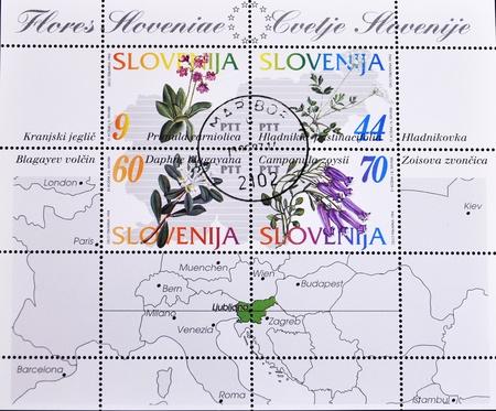 SLOVENIA - CIRCA 1994: A stamp printed in Slovenia shows different flowers, circa 1994  photo