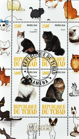 himalayan cat: ISRAEL - CIRCA 2010: A stamp printed in Chad shows different types of cats, serie, circa 2010