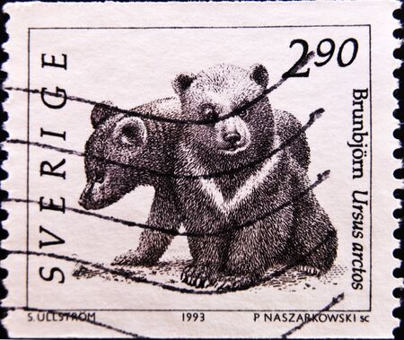 philately: SWEDEN - CIRCA 1993: A stamp printed in Sweden shows two bears, circa 1993