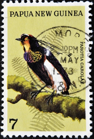PAPUA NEW GUINEA - CIRCA 1991: A stamp printed in Papua New Guinea shows a bird, parotia carolae, circa 1991 Stock Photo - 10741243