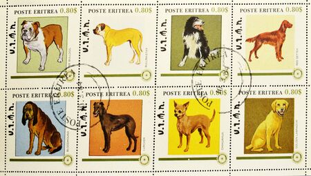 lurcher: ERITREA - CIRCA 1984: A stamp printed in Eritrea showing different breeds of dogs, serie, circa 1984  Stock Photo