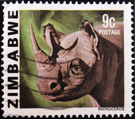 zimbabwe: ZIMBABWE - CIRCA 1985: Un sello impreso en Zimbabwe muestra un rinoceronte, alrededor de 1985