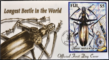 longest: FIJI - CIRCA 2004: A stamp printed in Fiji shows longest beetle in the world, first day of issue, circa 2004