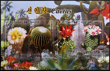 types of cactus: NORTH KOREA - CIRCA 2004: A stamp printed in DPR Korea shows different types of cactus, circa 2004