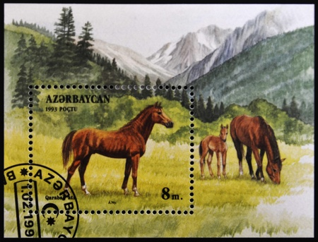 AZERBAIJAN - CIRCA 1993: A stamp printed in Azerbaijan shows a horse standing in a pasture, circa 1993. photo