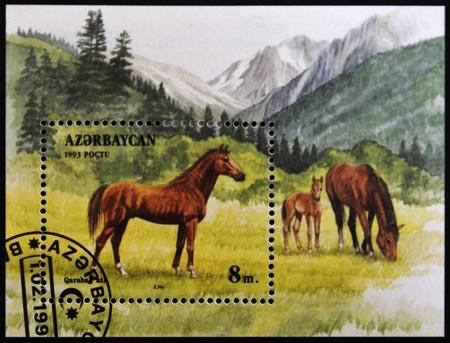 philatelic: AZERBAIJAN - CIRCA 1993: A stamp printed in Azerbaijan shows a horse standing in a pasture, circa 1993.
