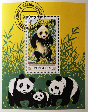 MONGOLIA - CIRCA 1990: A stamp printed in Mongolia shows a giant panda, circa 1990  photo