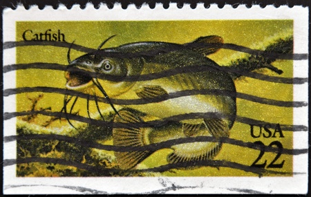 UNITED STATES OF AMERICA - CIRCA 1986: A stamp printed in USA shows catfish, circa 1986 photo