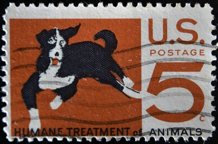 UNITED STATES OF AMERICA - CIRCA 1966: A stamp printed in USA shows Mongrel dog, humane treatment of all animals, circa 1966  photo