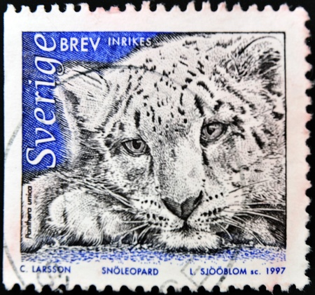 SWEDEN - CIRCA 1997: A stamp printed in Sweden shows a snow leopard, circa 1997 photo