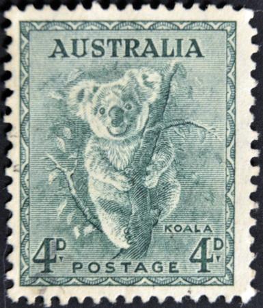 koalabeer: AUSTRALIË - CIRCA 1937: stempel gedrukt door Australië, toont koala, circa 1937 Stockfoto