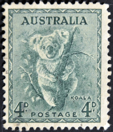 AUSTRALIA - CIRCA 1937: stamp printed by Australia, shows koala, circa 1937  photo