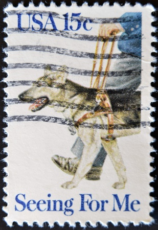UNITED STATES OF AMERICA - CIRCA 1979 : A stamp printed in the USA shows guide dog, Seeing for me, circa 1979  photo