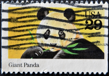 literally: UNITED STATES OF AMERICA -CIRCA 1980: A stamp printed in USA shows image of The giant panda, circa 1980. Stock Photo