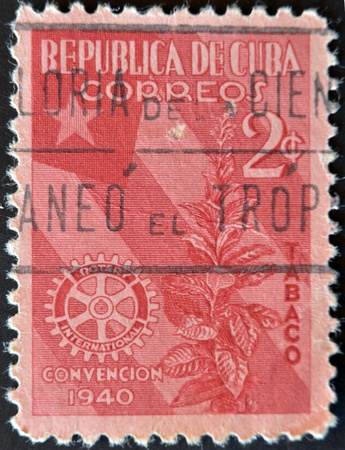 CUBA - CIRCA 1940: A stamp printed in Cuba dedicated to plant to snuff, circa 1940 photo