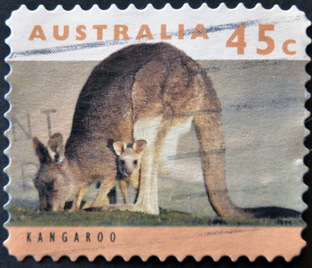 AUSTRALIA - CIRCA 1994: stamp printed by Australia, shows kangaroo, circa 1994  photo