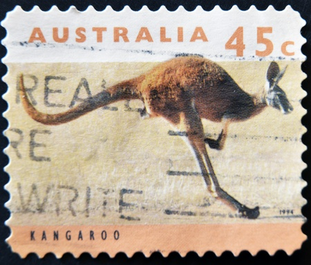 australia stamp: AUSTRALIA - CIRCA 1994: stamp printed by Australia, shows kangaroo, circa 1994